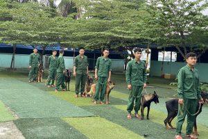 Trung tâm huấn luyện chó cảnh chuyên nghiệp tại TPHCM