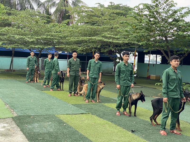 huấn luyện chó cảnh